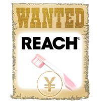 REACH イメージキャラクター募集 受付中